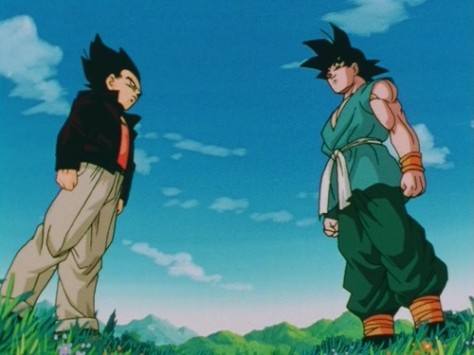 Goku_and_Vegeta_enddbz